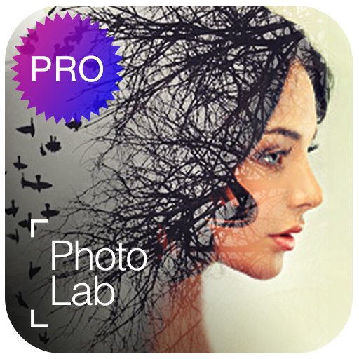 Photo Lab Picture Editor face effects, art frames for computer in www.techfizzi.com
